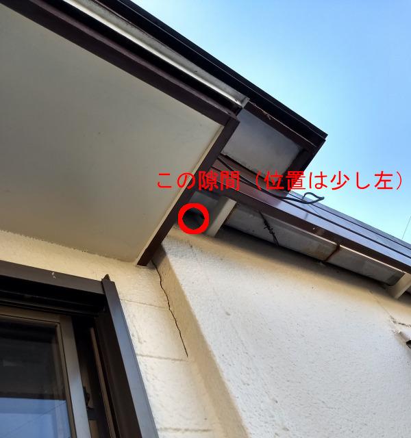 IMG_20180804_174600428_HDR.jpg